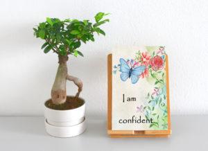 I am confident Display