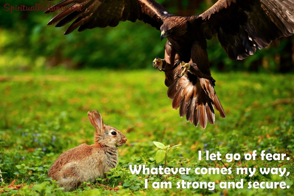 I let go of fear. Whatever comes my way, I am strong and secure. Affirmation for Strength