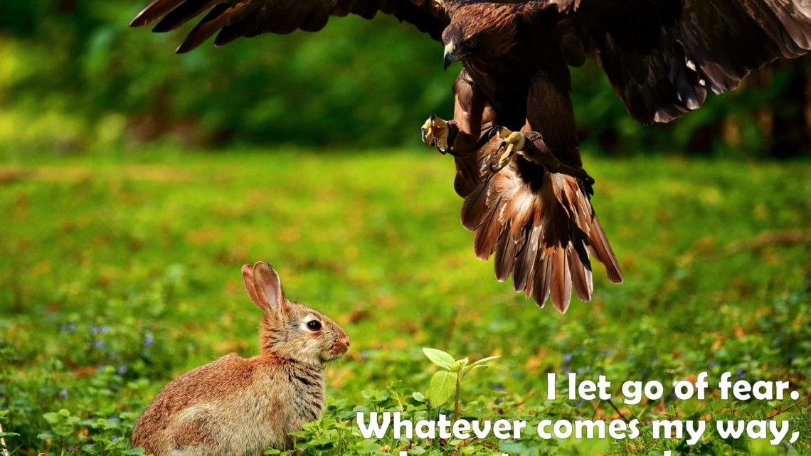 I let go of fear. Whatever comes my way, I am strong and secure. ~ Affirmation for Strength
