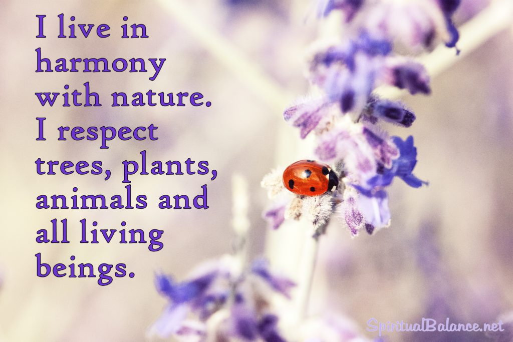 I live in harmony with nature. I respect trees, plants, animals and all living beings.