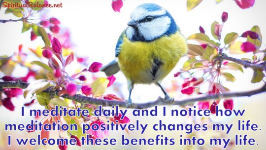 I meditate daily and I notice how meditation positively changes my life. I welcome these benefits into my life. ~ Affirmation for Meditation